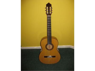 PdL 1 - the guitar