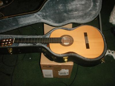 Alhambra 8p Classical Guitar.  She sounds great!
