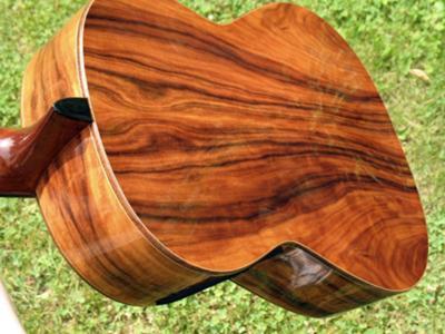 David Argent, classical guitar back
