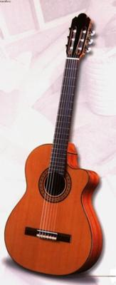 Electro Acoustic Sanchez guitar: beautiful instrument