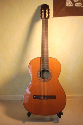 Esteve Classical Guitar