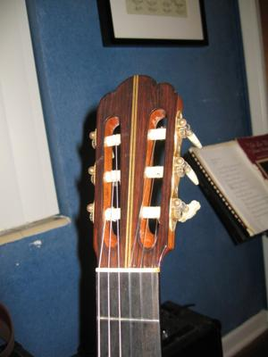 1975 Haselbacher Cedar Top headstock front view