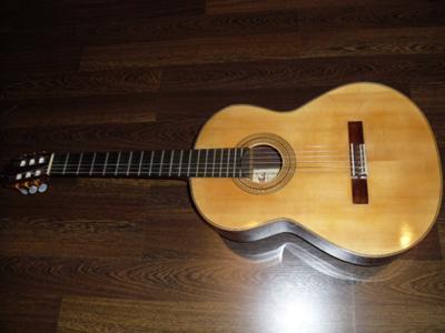 Lipkin/Algranati concert guitar