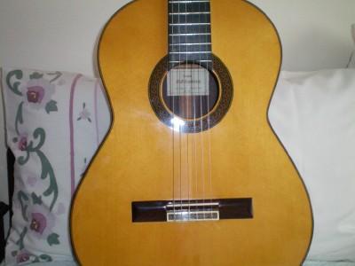 Manual Contreras N4 Guitar