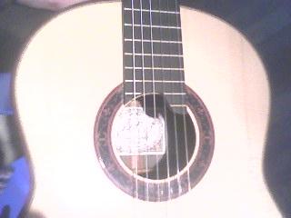 Paul Fischer 50th Aniversary Premier concert guitar