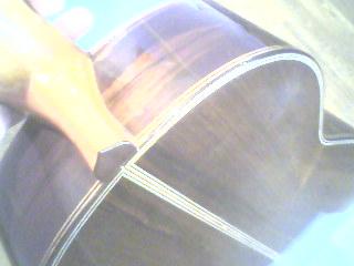 Paul Fischer concert guitar