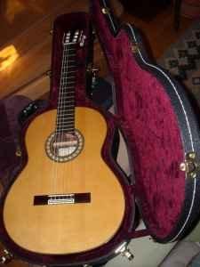 Pavan FN Flamenco Negra Front
