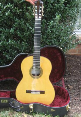 Pavan TP-30 Classical Guitar Front