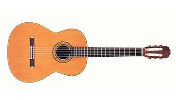 Takamine Hirade H5 Guitar: a great choice