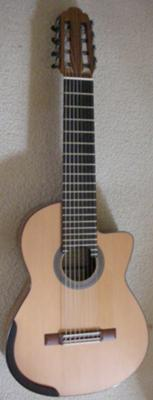 STEPHEN KAKOS - 8 STRING TERZ GUITAR