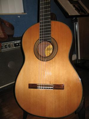 1975 Haselbacher Cedar Top front view.