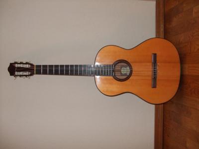 Mark IV Guild Guitar