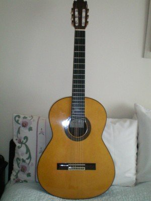 Manual Contreras N4 Guitar for sale